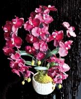 plateau orchidée 3 brins - contenant gris pierre