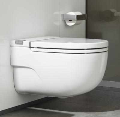 salle de bain cuvettes suspendues cuvette suspendue meridian in tank avec r servoir int gr. Black Bedroom Furniture Sets. Home Design Ideas