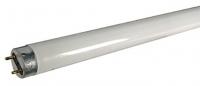 lampe UV standard 30W